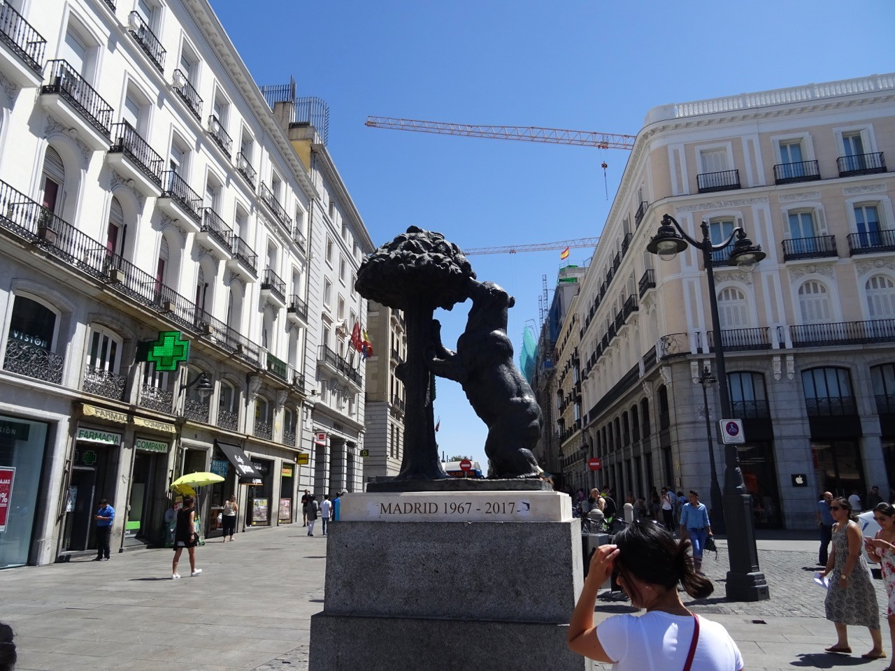 bear and strawberry tree madrid