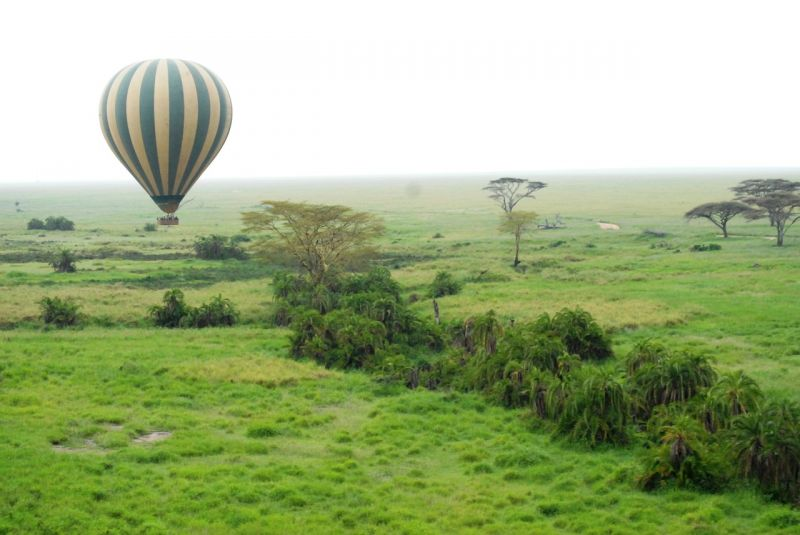 Balloon Tour Serengethi