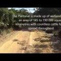 Riding through the Pantanal in Brazil